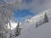 De winterberg stock afbeeldingen