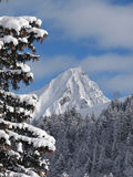 De winterberg stock foto