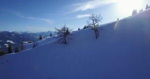 De winterbergen en het meest forrest stock footage
