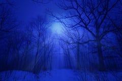De winterblauw Royalty-vrije Stock Afbeelding