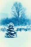 De winterblauw Royalty-vrije Stock Foto