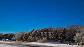 De winterblauw royalty-vrije stock foto's