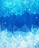 De winterbloemen Royalty-vrije Stock Afbeelding