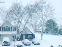 De winterbomen en Huizen royalty-vrije stock foto
