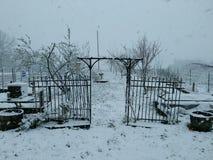 De winterboomgaard Royalty-vrije Stock Afbeeldingen