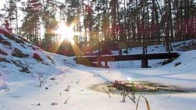 De winterbos en de zon, tijd-tijdspanne stock footage