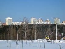 De winterbos en stad stock foto's