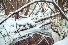De winterbos en stroom stock afbeelding