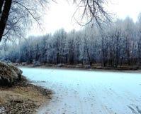 De winterbos met de ijsrivier Stock Afbeeldingen