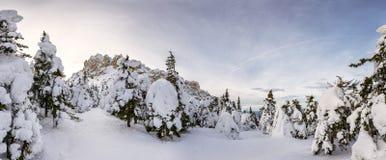 De winterbos met klip Royalty-vrije Stock Fotografie