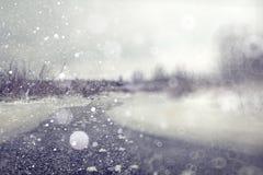 De winterbos met sneeuwval stock afbeelding