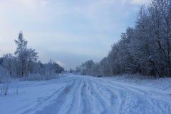 De winterbos na een sneeuwval op Kerstmis in de doden van winte Stock Afbeelding