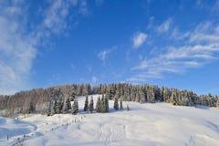 De winterbos in de Ural-Bergen, Rusland, Chelyabinsk-gebied, Minyar Pushkin` s sprookje stock fotografie