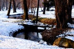 De winterbrug Stock Afbeeldingen