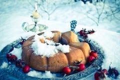 De wintercake met hond-roze vruchten Stock Foto's