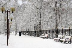 De wintercityscape, allen behandeld met sneeuw stock afbeeldingen