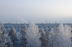 De wintercityscape met een blok en bomen Stock Fotografie