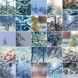 De wintercollage Royalty-vrije Stock Afbeelding