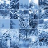 De wintercollage Royalty-vrije Stock Afbeeldingen