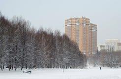 De winterdag in het Park De sneeuw, rust a-gang in het Park stock afbeeldingen