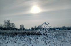 De winterdageraad in het dorp Royalty-vrije Stock Afbeeldingen