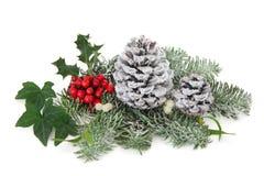 De winterdecoratie Royalty-vrije Stock Foto's