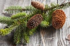 De winterdecoratie Stock Fotografie
