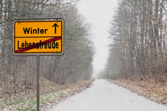 De winterdepressies stock fotografie