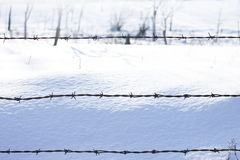 De winterdetail Royalty-vrije Stock Foto