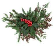 De winterflora royalty-vrije stock afbeeldingen