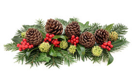 De winterflora en Kerstmisdecoratie stock foto