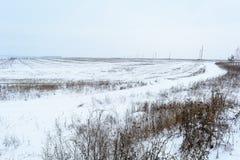 De wintergebied, Mist op het gebied Stock Foto's