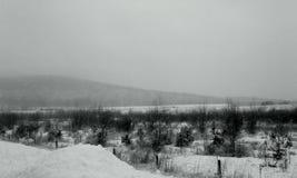 De winterhemel Royalty-vrije Stock Afbeeldingen