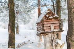 De winterhuis voor vogels op de boom Stock Foto's