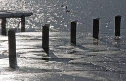 De winterindrukken van Tegernsee in zwart-wit Stock Foto's