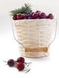De winterkaart - Amerikaanse veenbessen in hardnekkig verzet tegene gevormde vaas met Kerstboomtakje Stock Afbeelding