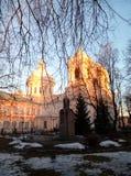 De winterkathedraal Stock Afbeelding