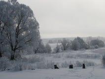 De winterkleuren Stock Fotografie