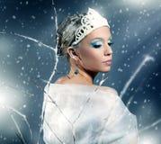 De winterkoningin Stock Fotografie