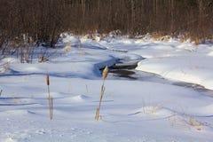 De winterkreek Stock Foto's