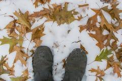 De winterlaarzen met bladeren en sneeuw stock afbeeldingen