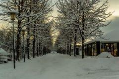 De winterland IJsland stock fotografie