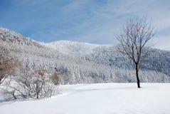 De winterland van Beskydy royalty-vrije stock foto