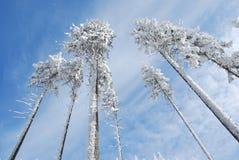 De winterland van Beskydy stock fotografie