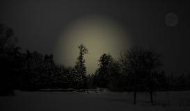 De winterlandschap royalty-vrije stock foto's