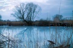 De winterlandschap royalty-vrije stock afbeeldingen