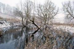 De winterlandschap. Stock Afbeeldingen