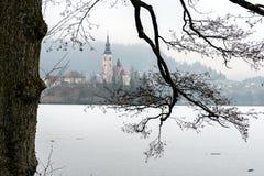 De winterlandschap Afgetapt Meer Royalty-vrije Stock Foto's