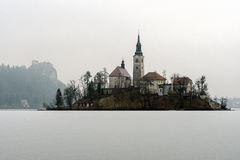 De winterlandschap Afgetapt Meer Stock Afbeelding