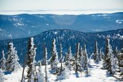 De winterlandschap in bergen royalty-vrije stock afbeelding